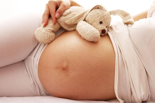 libro embarazo sin toxicos de la campaña hogar sin toxicos