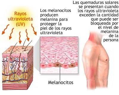 Fuente: http://dimetilsulfuro.es