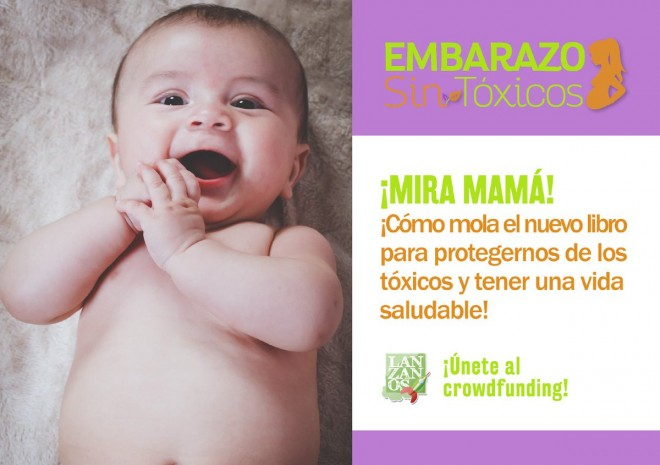 libro embarazo sin toxicos my natural baby box